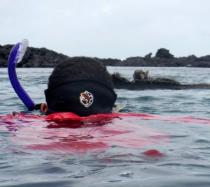 Me swimming with marine iguanas